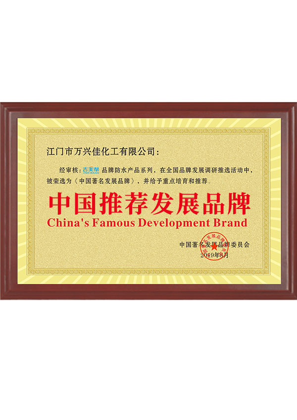 中国推荐发展品牌